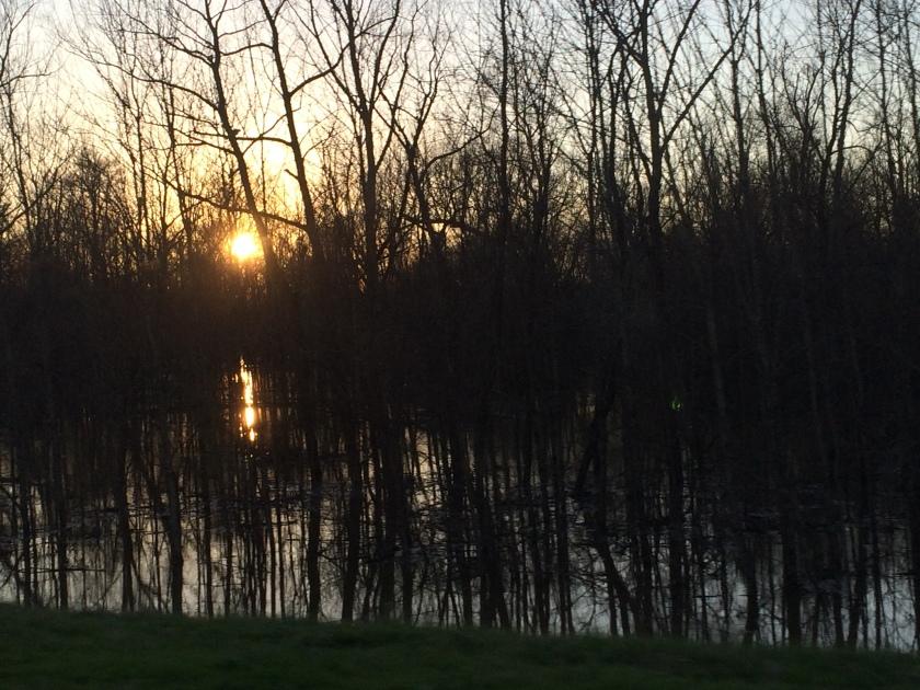 Marshland at Sunset